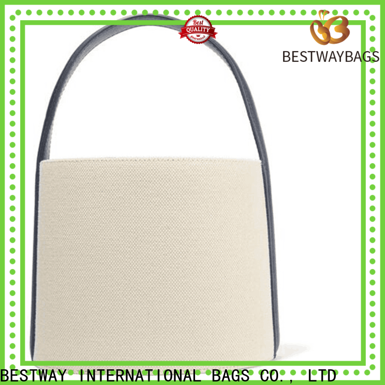 Bestway multi function canvas carry bags Supply for shopping