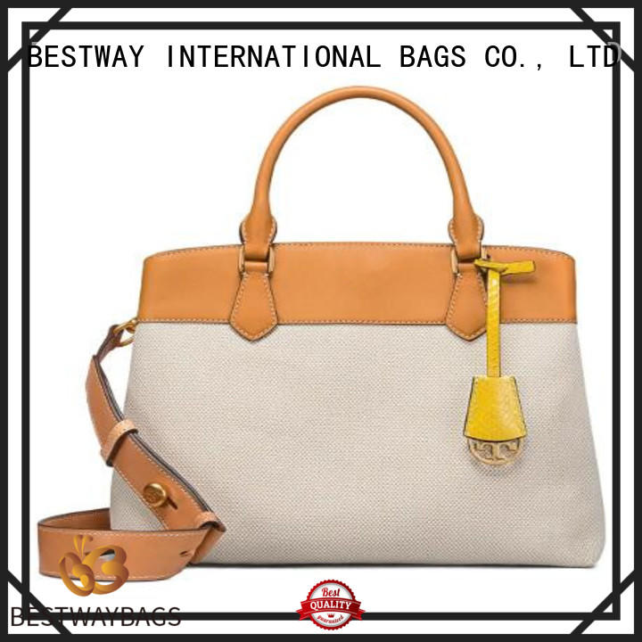 Bestway innovative canvas bag online for shopping